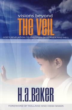 Visions_Veil cover