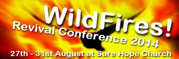 WildFires-Conference