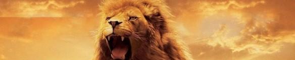 Lion on Judah roars
