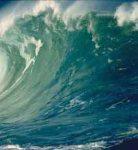tsunami_ed